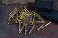 Ammunition and magazines 223 rem