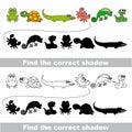 Amphibious set. Find correct shadow. Royalty Free Stock Photo