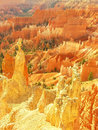Amphitheater, view from Sunset poin, Bryce Canyon National Park Royalty Free Stock Photo