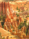 Amphitheater, view from Sunset poin, Bryce Canyon National Park Stock Image
