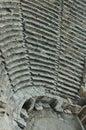 Amphitheatre dawność Zdjęcia Stock