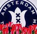 Amsterdam Colourful Tulips Royalty Free Stock Photo