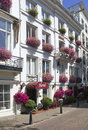 Amsterdam hotel small with purple flowers in holland Royalty Free Stock Photos