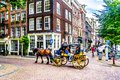 Horse and Carriage carrying tourists in the Jordaan neighborhood of Amsterdam