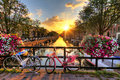 Amsterdam summer sunrise beautiful over the netherlands with flowers and bicycles on the bridge in spring Royalty Free Stock Image