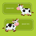 Amusing cow and bright green grass Stock Image