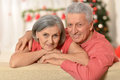 Amusing old couple at christmas wearing holiday caps Stock Photography