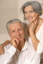 Amusing old couple happy smiling at home Stock Image