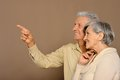 Amusing old couple happy smiling man pointing by his hand Stock Image