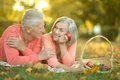Amusing old couple portrait of on picnic Royalty Free Stock Images