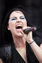 Amy Lee Royalty Free Stock Photo