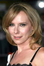 Amy Ryan Immagine Stock
