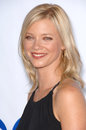 Amy Smart Royalty Free Stock Image