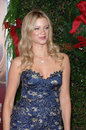 Amy Smart Stock Photography