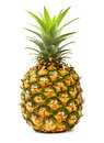 Ananas isolated on white background pineapple tropical fruit Royalty Free Stock Photo