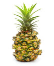 Ananas isolated on white background pineapple tropical fruit Stock Photography