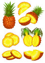 Ananas piece set Royalty Free Stock Photography