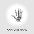 Anatomy hand Vector Flat Icon