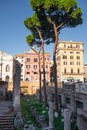 Ancient column ruins surrounded by modern streets in Rome, Italy Royalty Free Stock Photo