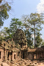 Ancient gallery of amazing Ta Prohm temple overgrown with trees. Mysterious ruins of Ta Prohm nestled among rainforest Royalty Free Stock Photo