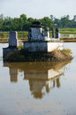 Ancient grave reflect on surface water of rice field in flooding season at mekong delta Royalty Free Stock Photography