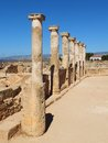 Ancient greek columns at an archaeological site cyprus Stock Photography