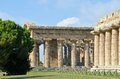 Ancient greek temples and trees in southern italy Royalty Free Stock Images