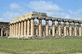 Ancient greek temples and trees in southern italy Stock Image