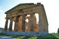 Ancient greek temples and trees in southern italy Royalty Free Stock Photography