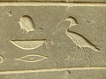 Ancient hieroglyphics on display outside Egyptian museum, Cairo Royalty Free Stock Photo