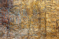 Ancient hieroglyphs on stone wall Royalty Free Stock Image