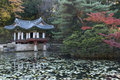 Ancient Korean Garden Stock Photography