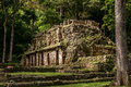 The Ancient Mayan Building in Yaxchilan Royalty Free Stock Photo