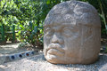 Ancient olmec head, La Venta Royalty Free Stock Images