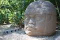 Ancient olmec head, La Venta Royalty Free Stock Photo