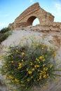 Ancient Roman aqueduct in Ceasarea Stock Photos