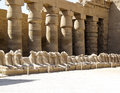 Ancient ruins of karnak temple at luxor in egypt Stock Image