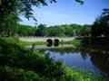 The ancient stone bridge Royalty Free Stock Photos