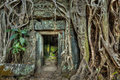 Ancient stone door and tree roots, Ta Prohm temple, Angkor, Camb Royalty Free Stock Photo
