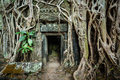 Ancient stone door and tree roots ta prohm temple angkor camb travel cambodia concept background ruins cambodia Stock Photos