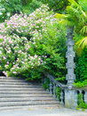 Ancient stone staircase overgrown with bushes and flowers Royalty Free Stock Images