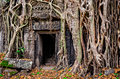 Ancient stone temple door and tree roots angkor wat cambodia Royalty Free Stock Photo