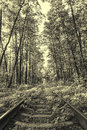 Ancient style photo of forest railway sepia Stock Photography