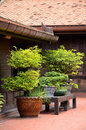 Ancient thai house old style of small garden around groups of vintage Royalty Free Stock Photo
