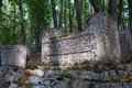 Ancient tombstones in the woods Royalty Free Stock Photography