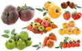 Ancient varieties of tomatoes in front white background Royalty Free Stock Image