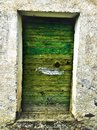Ancient and vintage green door, history and fascination Royalty Free Stock Photo