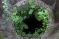 Ancient well overgrown with fern round Royalty Free Stock Photos