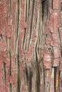 Ancient Wood Pillar Texture Royalty Free Stock Photo