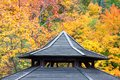 Ancient wooden roofing detail with autumn foliage background